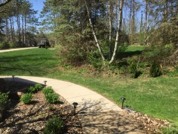 More Spring Planting
