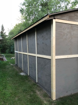 Shed Siding and Doors