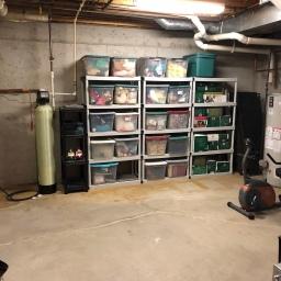 Basement Storage Reorganization